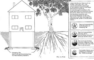 ottawa structural residential services ltd in ottawa, on is aweeping tile diagram of work